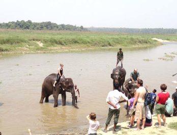 chitwan-elephant-riding