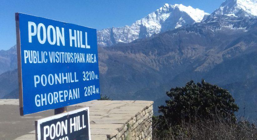 At Poonhill, Top of Ghorepani