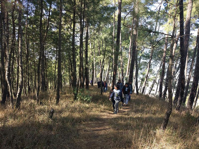 Hiking Dakshinkali road to hattiban resort